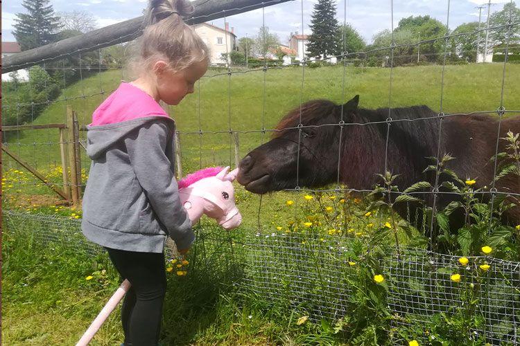 ferme-animaux-enfants-albi-camping-6